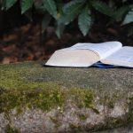 Pistes de lecture Vie Chrétienne
